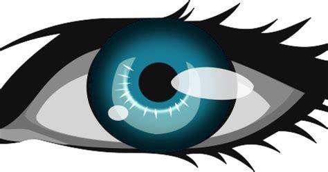 The bluest eye theme essay